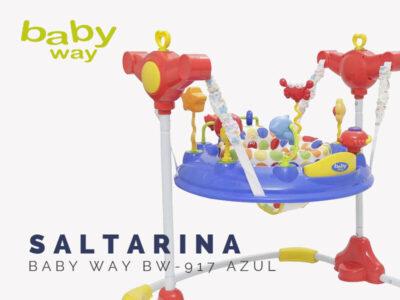 800x300 baby way2